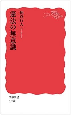 憲法の無意識 (岩波新書 新赤版)