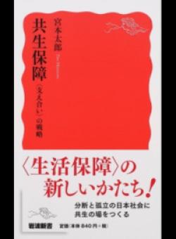 共生保障 〈支え合い〉の戦略 (岩波新書 新赤版)