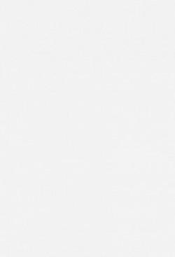 徳川家康 1 (出世乱離の巻)