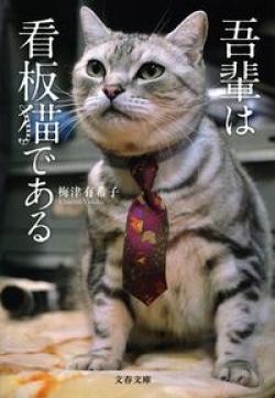 吾輩は看板猫である