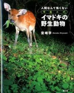 イマドキの野生動物 : 人間なんて怖くない : 写真ルポ