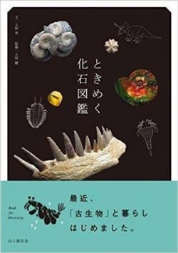 ときめく化石図鑑