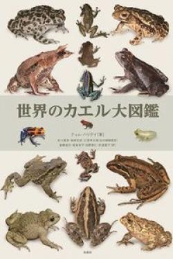 世界のカエル大図鑑
