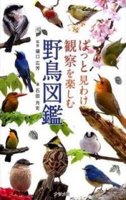 ぱっと見わけ観察を楽しむ野鳥図鑑