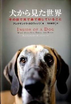 犬から見た世界 : その目で耳で鼻で感じていること