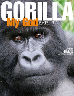 GORILLA MY GOD