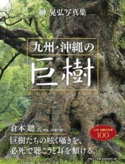 九州・沖縄の巨樹