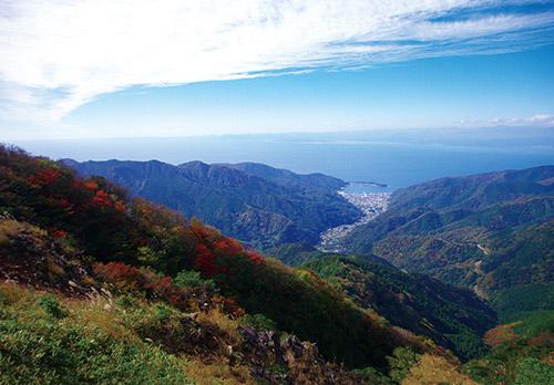 「達磨山」(静岡県)